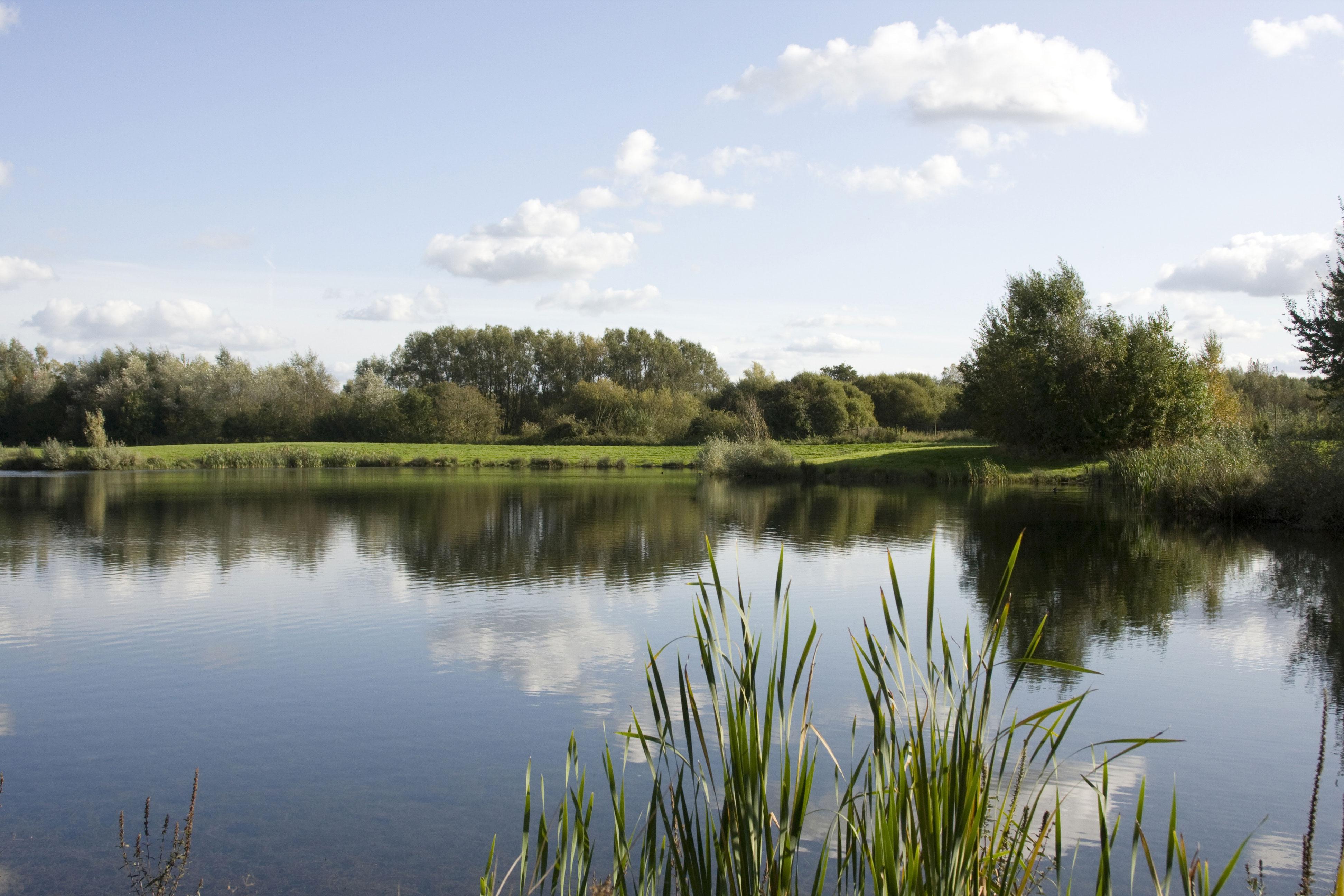 haywards farm lake